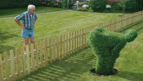problemi-di-vicinato